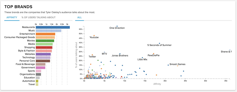 influencer audience demographics